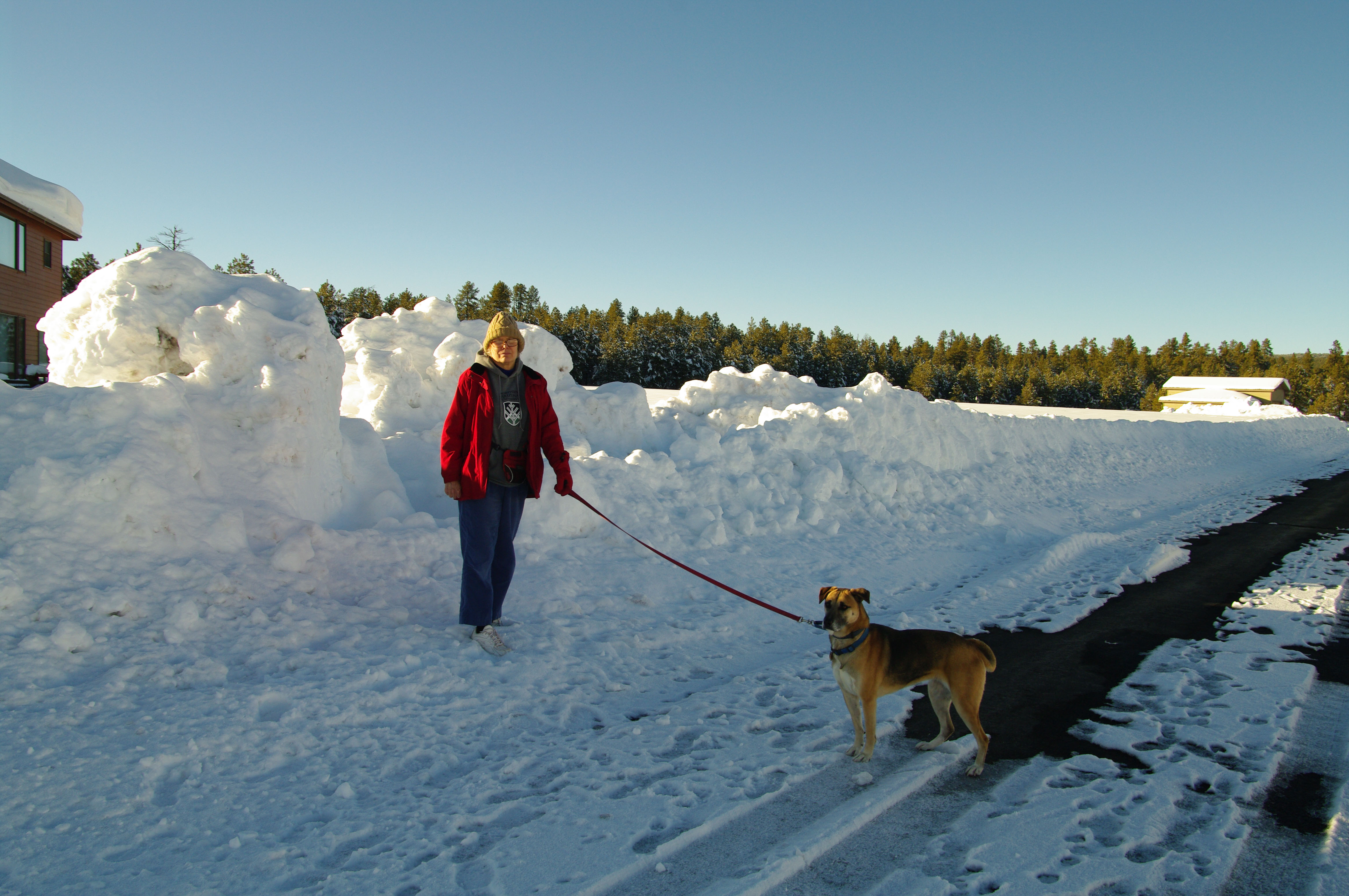 K20D4585.jpg - Donna and Aspen, two days afterwards, showing the piles of snow from the plows.